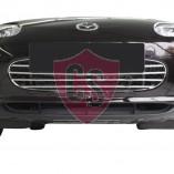 Mazda MX-5 NC Mesh Grill Aston Martin Look (1 piece) 2005-2009